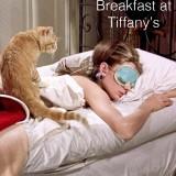 BedRoom_0005_Breakfast-at-Tiffany's