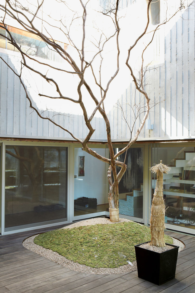 four-box-house-courtyard