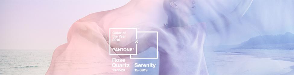 pantone 13