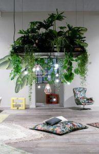 houseplants-display-ideas-7