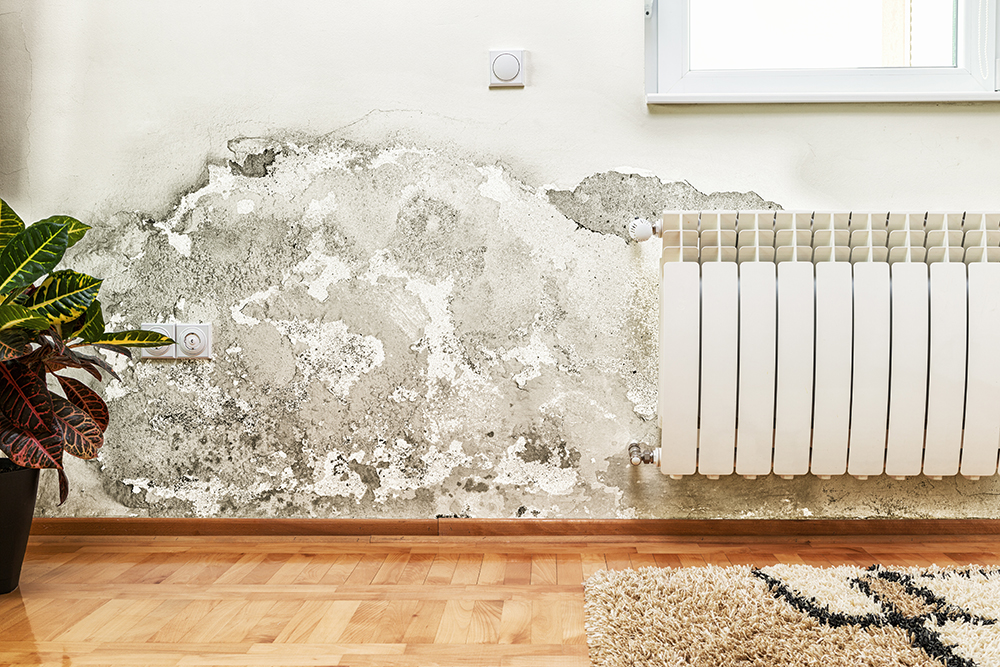 Damage caused by damp on a wall in modern house